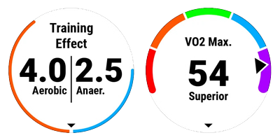trainning-effect_VO2max